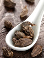 Nepal High Quality Big Cardamom